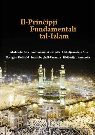The Fundamental Articles and Pillars of Islam